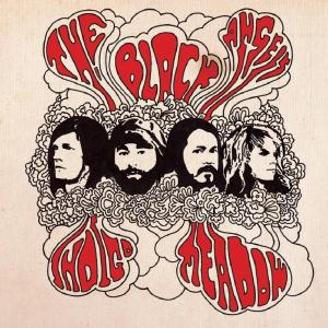 The Black Angels - Indigo Meadow