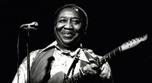 Muddy Waters 1977